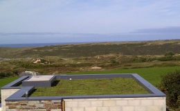 Green Roofs (12)