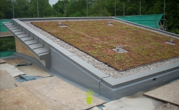 Green Roofs (6)