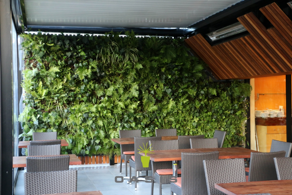 Living walls for auckland christchurch nz wide oasis for Living wall systems