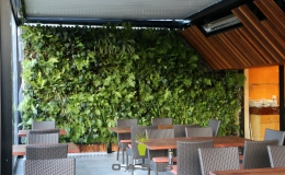 The George Hotel - Oasis Living Wall
